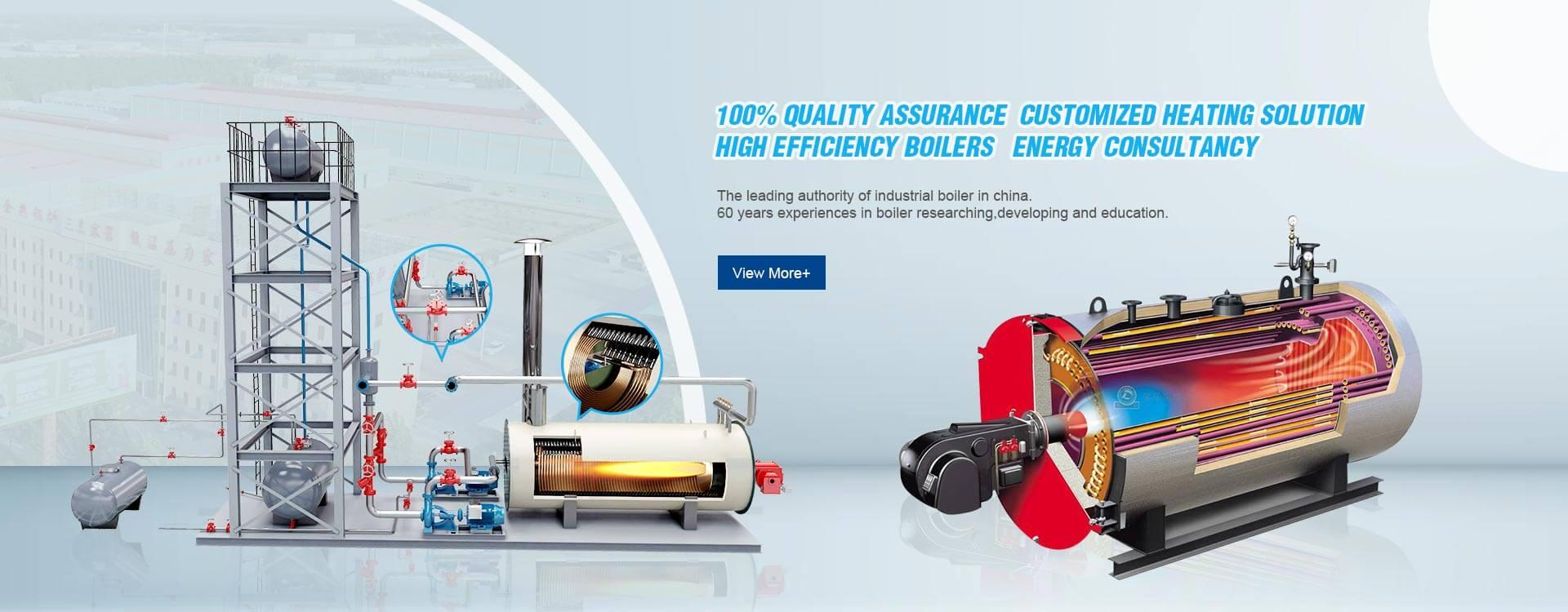 ssteam boiler,thermal oil boiler,biomass boiler supplier